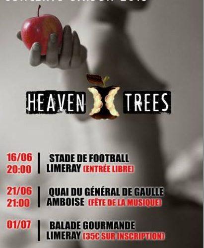 concerts Heaven Trees